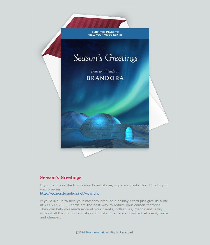 2014 Brandora Arctic Holiday Ecard Email